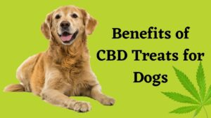 Benefits of CBD Products