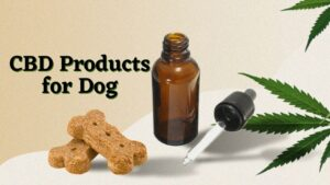 CBD Products for Dog